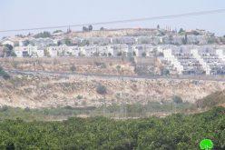 المستعمرون الإسرائيليون يستقبلون حكومة نتنياهو بتعزيز الاستيطان في المستعمرات الإسرائيلية