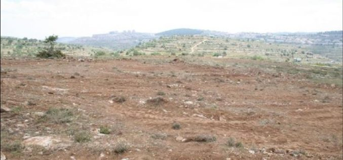 Israeli Settlers Pursue Geographical Contiguity between settlements