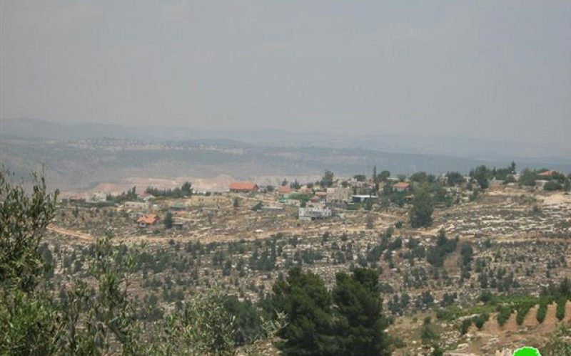 Beit Ayin colony settlers continue attacks against Khirbet Safa