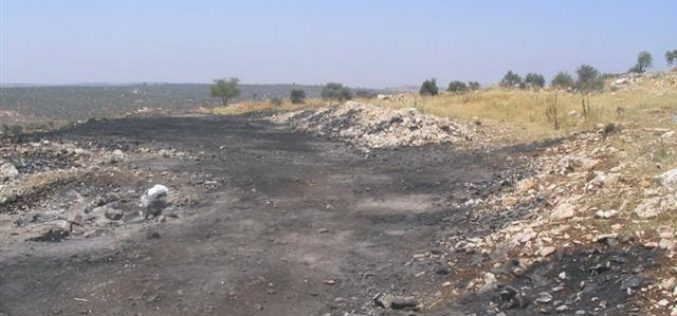 Israeli Colonists of Yetzhar set fire to Palestinian fields in Burin Village