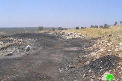 المستعمرون الإسرائيليون يحرقون مزيداً من الأراضي الزراعية الفلسطينية في قرية بورين