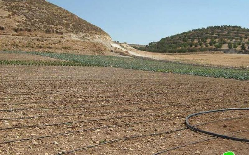 Confiscation of agricultural water tanks and irrigation tools