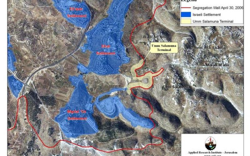 Umm Salamuna Village stands to lose its lands for the Israeli colonial activities