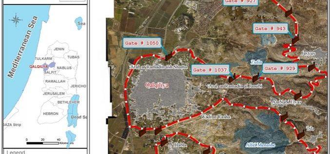 The Segregation Wall Gates… a Source of Continuous Agony for Qalqiliya Farmers