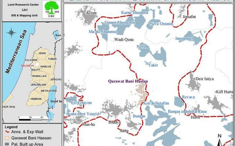 Israeli Colonists Escalate their Aggressions against Palestinians