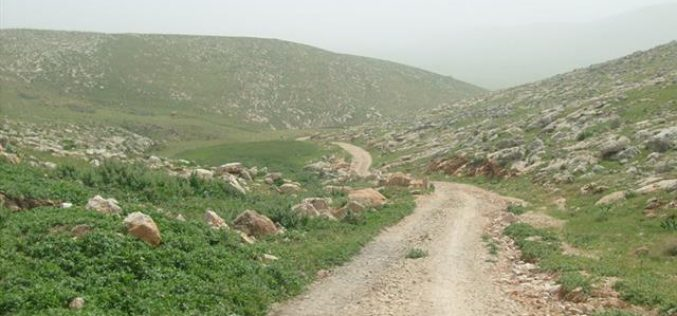 Road Renovation Deterrence in Al Ibqe'a Plain