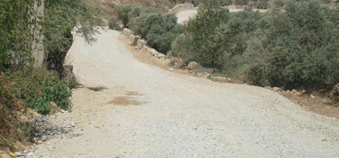 Stop-Work Order against an Agricultural Road in Kafr Kaddum
