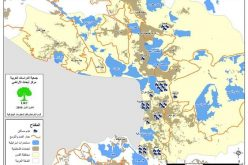 القدس تحت الاحتلال في عامها 2010
