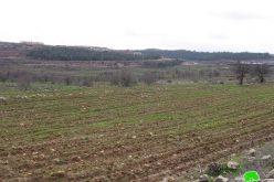 الاحتلال يستولي على نحو 600 دونماً من أراضي بريكوت