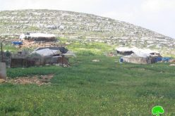 5 Stop-Work Orders against Bedouin Families