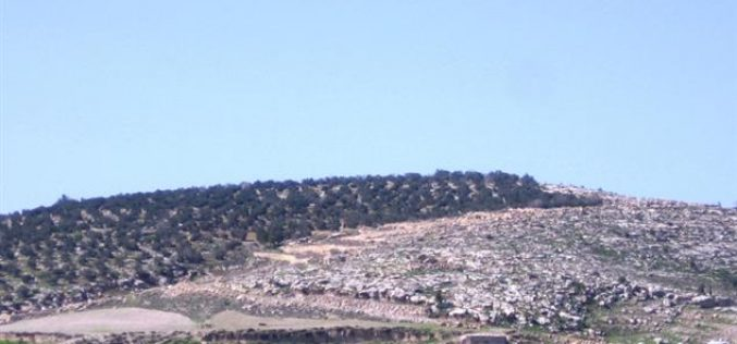 An Israeli Military Order to Evacaute 20 Dunums of the Lands of Kharas Town
