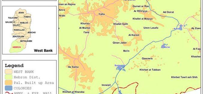 مستعمرو سوسيا يحولون أراضي المواطنين مراعياً  لمواشيهم