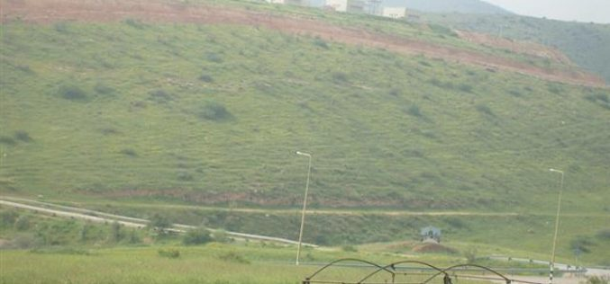 Miskiyut Recent Mass Expansions in Northern Jordan Valley
