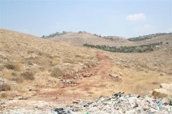 """Israeli Piracy During the Daylight"" The Israeli Bulldozers Started to Razing Lands in Deir Qiddis in order to loot more than 100 dunums of Deir Qiddis lands southwest of Ramallah"