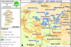 الاعتداء على كروم العنب في بلدة بيت أمر في محافظة الخليل