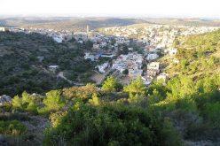 الاحتلال الإسرائيلي يستهدف المفاحم في قرية برطعة الشرقية- جنين