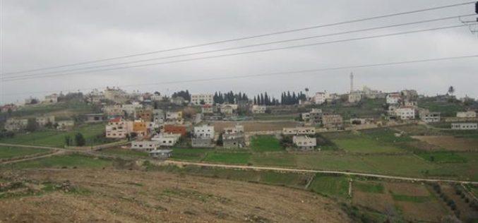 Ravaging 60 trees in Jinsafut village in Qalqiliya