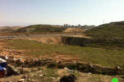 Laying Foundation for the Talmudic Park in Al 'Isawiyya town