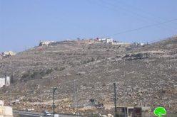 مستعمرون يزرعون أراضي المواطنين بالأشجار الحرجية  في البقعه والعديسة – محافظة الخليل