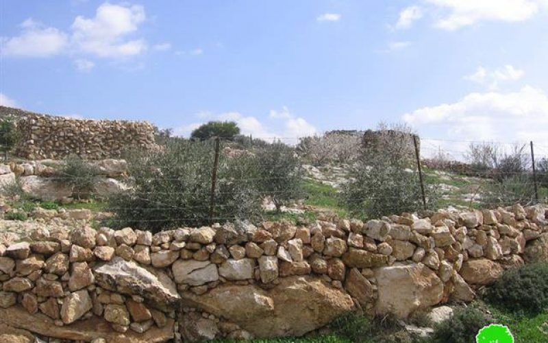 Land Eviction Notices in Beit Ulla