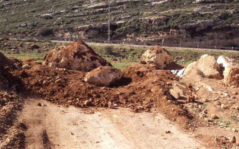 """مستوطنو """"شفوت راحيل"""" يقتلعون 60 غرسة زيتون أراضي قريوت – محافظة  نابلس"""