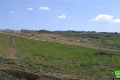 مستعمر يحاول سرقة قطيع أغنام من خربة زنوتة في جنوب شرق الظاهرية – محافظة الخليل