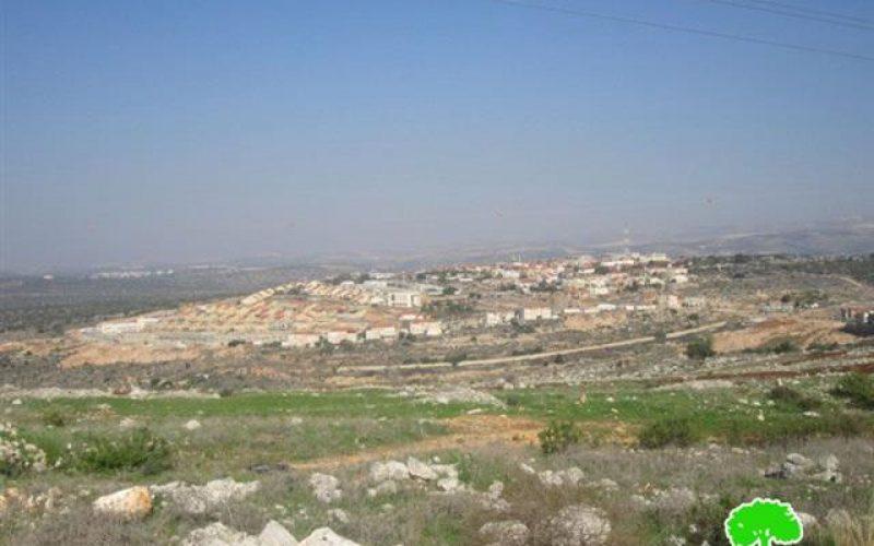 """مستوطنة """"رفافا"""" مصدر تلويث أراضي واد قانا –  محافظة سلفيت"""