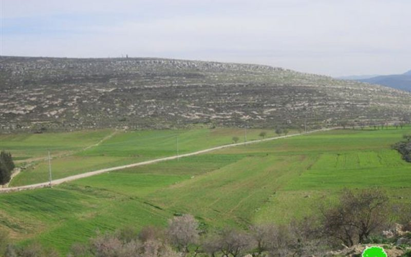 Prohibiting Palestinian Farmers from Plowing their Lands