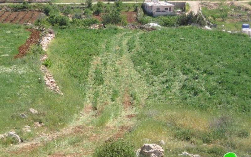 Demolishing a Cistern in Al Harayeq