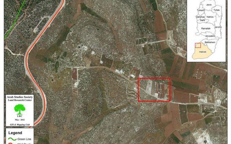 Bulldozing Lands…Uprooting Seedlings in Beit Ulla