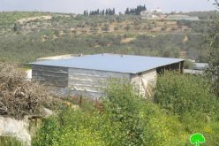 إقامة ثلاثة أبراج مراقبة عسكرية في محيط خربة امريحة