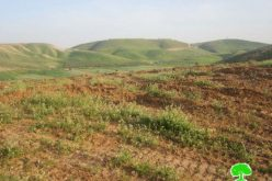 The Jordan Valley turned into Scorched Earth