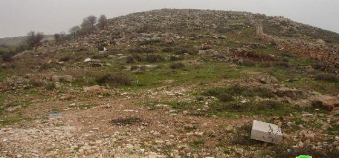 Plans to confiscate over 30 Dunums of Palestinian Lands