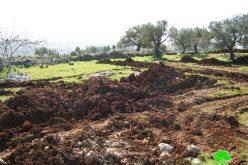 """بلدية الاحتلال تبدأ بتنفيذ مشروع الشارع """"21"""" على أراضي شعفاط"""