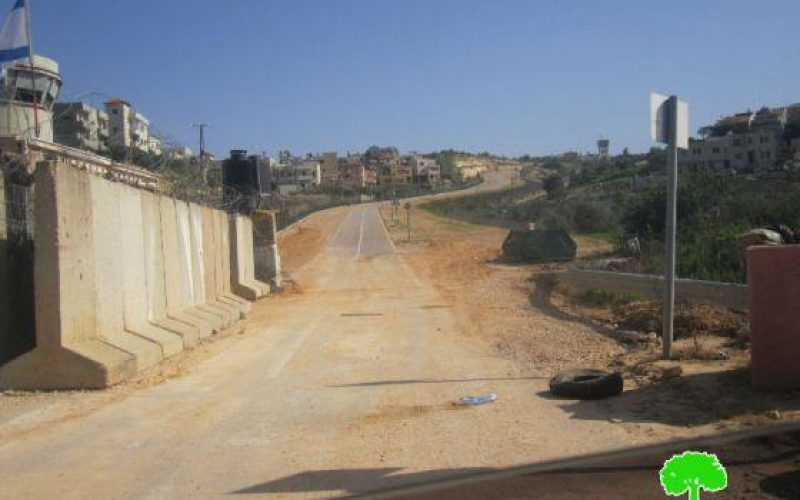 الاحتلال الإسرائيلي يبدأ في تنفيذ إقامة المقطع الشرقي من الجدار العنصري في قرية عزون عتمة