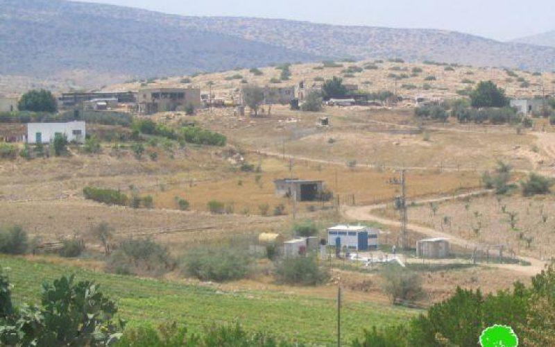 Israeli troops confiscate two cows in Furush Beit Dajan Village
