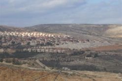 A Tender for 90 Colonial Units in Beit El