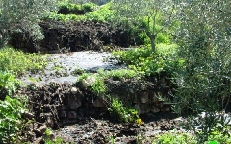 Pumping sewerage and manure to Agricultural lands in Nahhalin