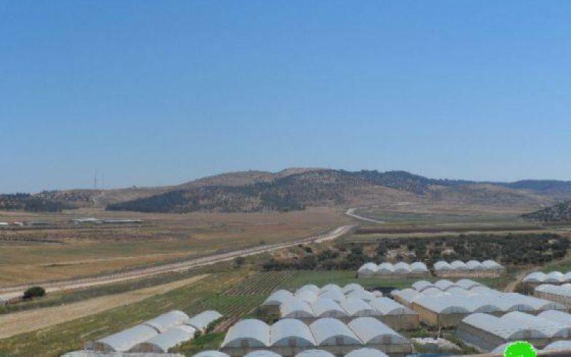 الاحتلال الإسرائيلي يخطر بالاستيلاء على ثلاثة دونمات زراعية بهدف توسعة حاجز الجلمة العسكري