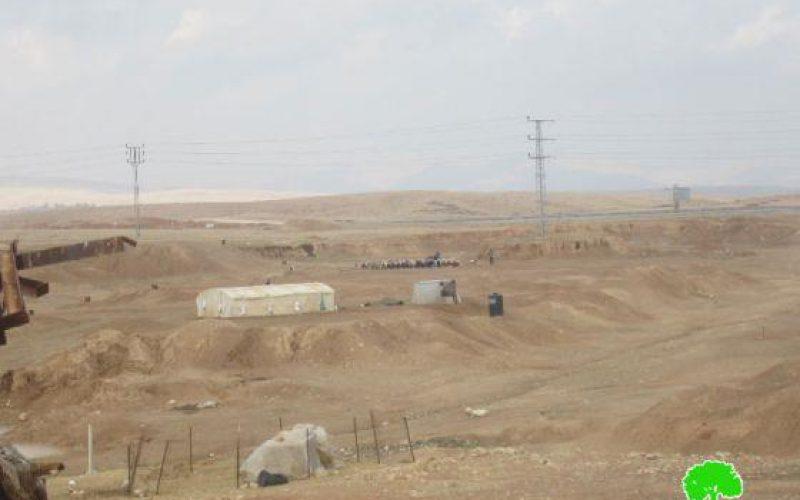 استهداف الثروة الحيوانية والمراعي وسيلة جديدة لضرب الوجود الفلسطيني في الأغوار