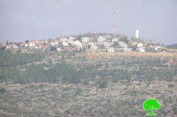 إحراق 6 دونمات زراعية في قرية عورتا /محافظة نابلس
