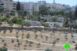 المستعمرون يحاولون شق شارع في وادي الحصين شرق الخليل