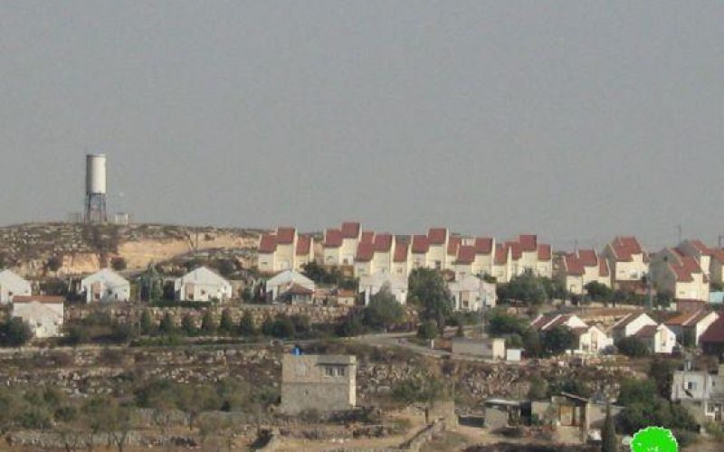 """كشف النقاب عن  166 وحدة استعمارية في مستعمرة """"عيليه"""" مقامة على أراض فلسطينية"""