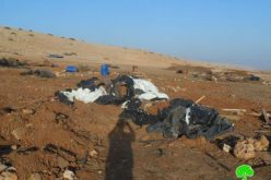 Demolishing a Number of Tents and Barns in Toubas Governorate