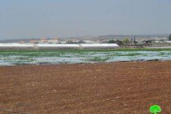 Demolition orders for a big number of artesian wells in Jenin
