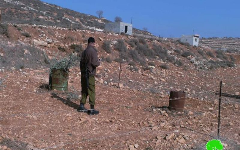 Damaging 27 olive trees and destroying a agricultural room in Nablus