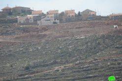 """أعمال توسعة تشهدها مستعمرة """" مجدوليم """" على أراض قرية قصرة"""