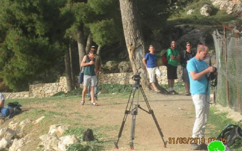 In an unprecedented activity, Israeli colonists break into Burak Suliman (King Solomon's pools) in area A in Al-Khadir city / Bethlehem governorate