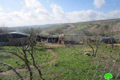 مصادرة الخيام التي تبرع بها الهلال الأحمر في خربة الجعوانة / محافظة نابلس