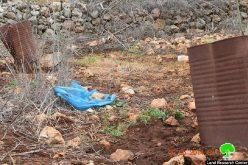 إتلاف 5 دونمات زراعية بمياه الصرف الصحي في بلدة قراوة بني حسان